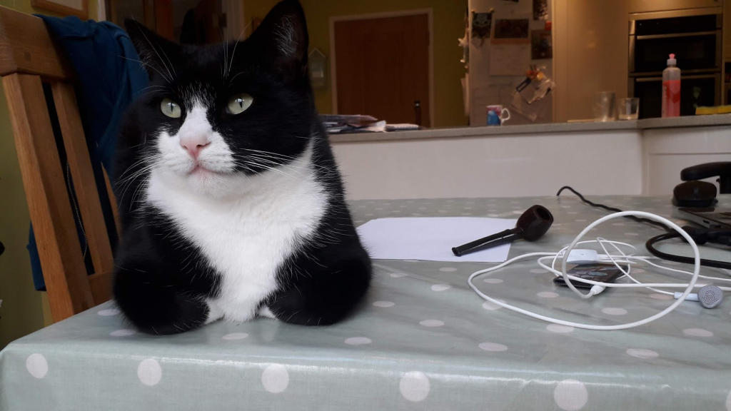 A black and white cat lying on a table with a blue and white polka dot pattern. Various electronic items beside the cat.